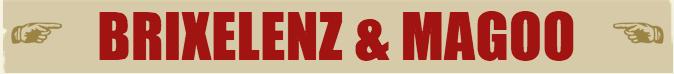 BrixeLenz&Magoo Logo